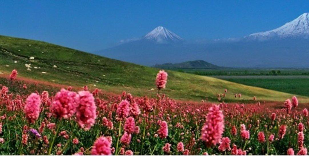 ArmeniaL2